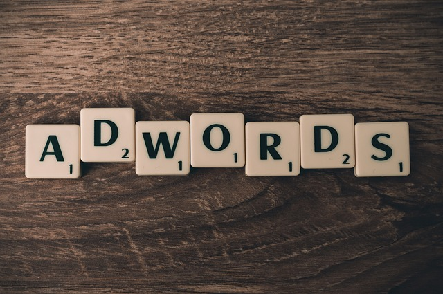 Profesjonalista  w dziedzinie kampani Adwords wesprze i dostosuje dobraną strategie do twojego interesu.